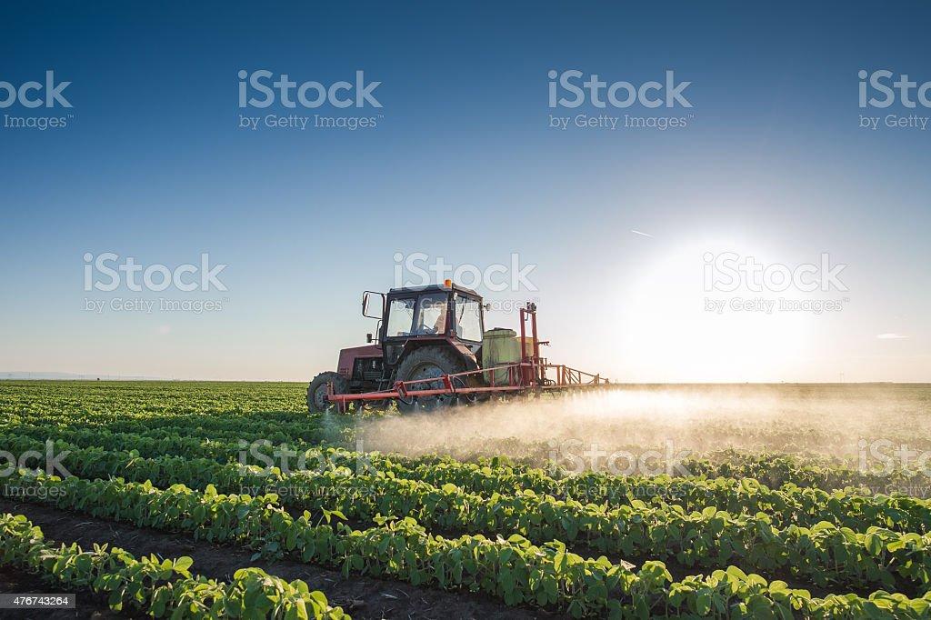 Tractor spraying stock photo