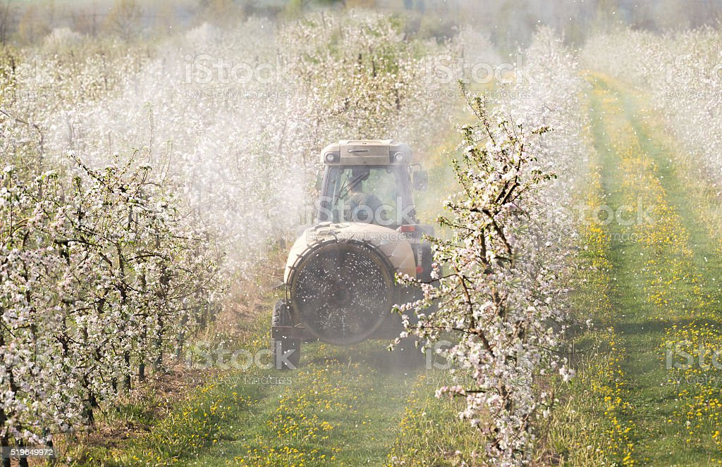 Tractor sprays insecticide stock photo