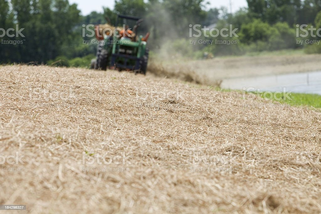 Tractor Towed Bale Processor Spreading Hay on Wetland Restoration Project stock photo