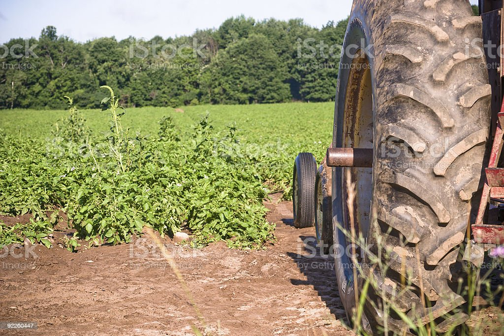 Tractor Waiting for Harvest royalty-free stock photo