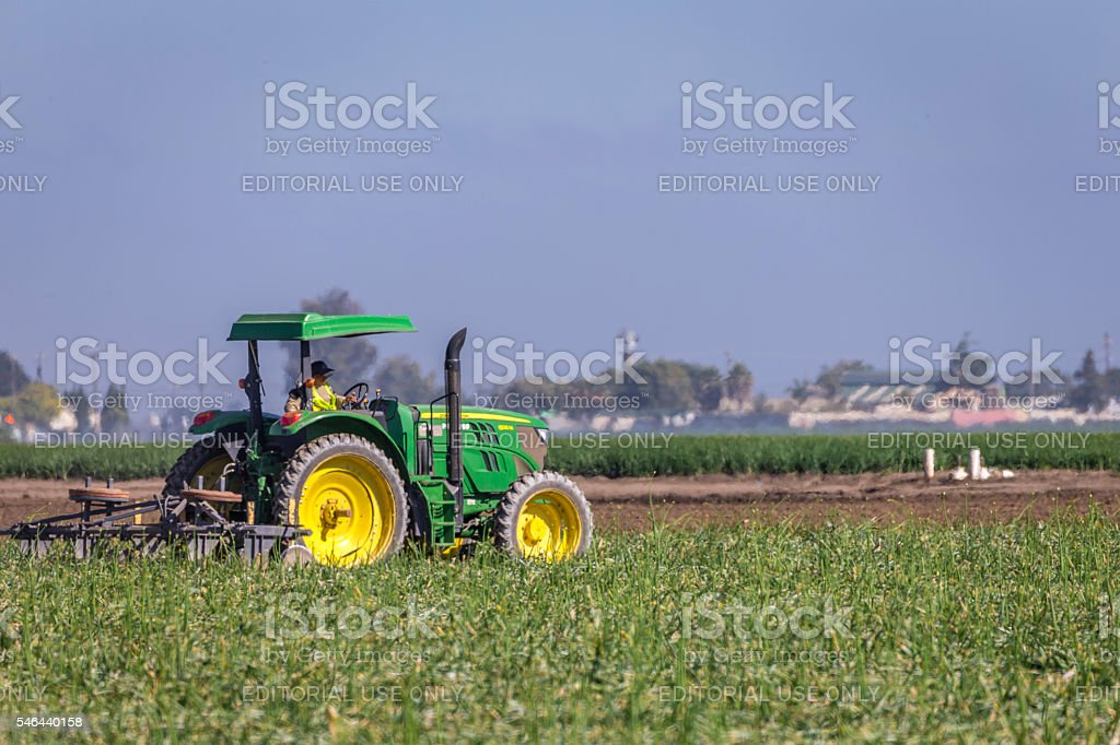 Tractor working in the farmland stock photo
