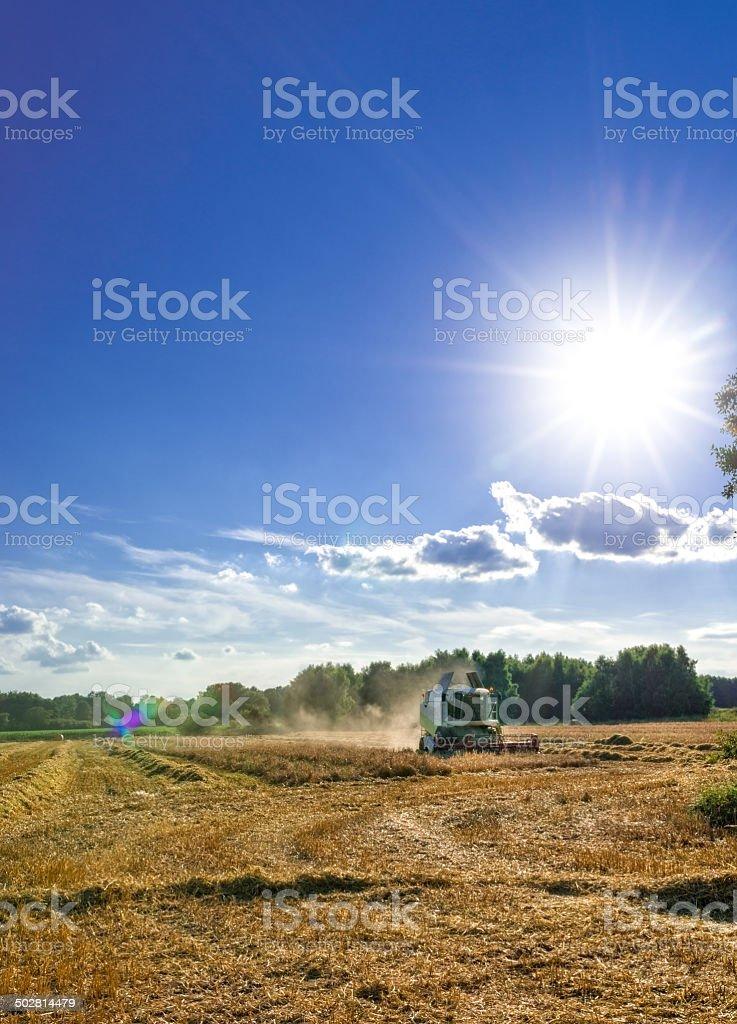 Tractors and harvesting royalty-free stock photo