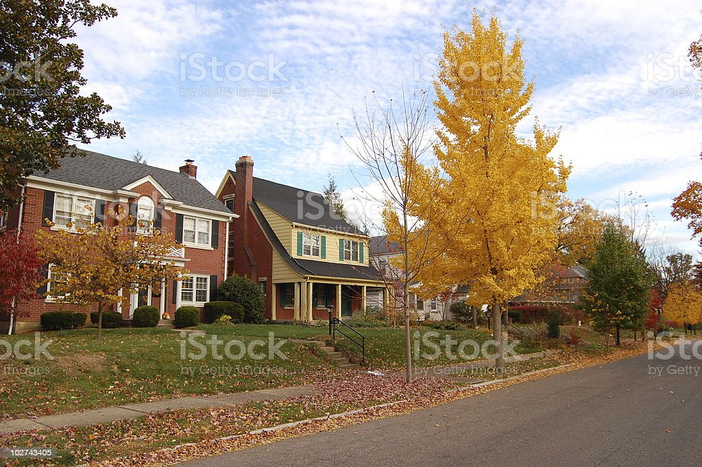 Traditional American Neighborhood stock photo