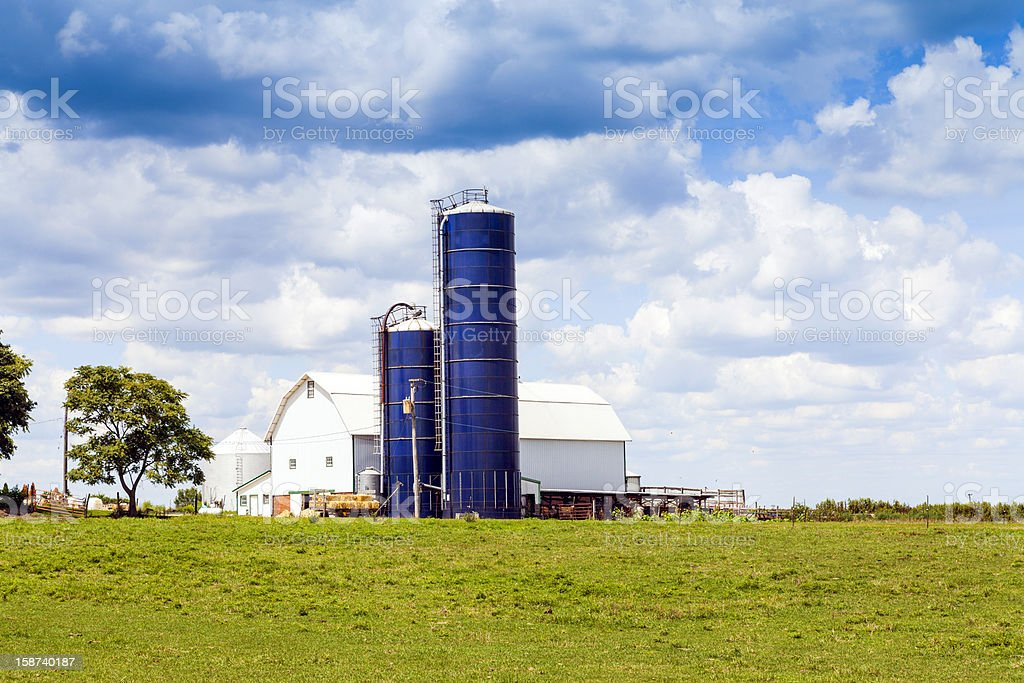 Traditional American White Barn With Blue Sky royalty-free stock photo
