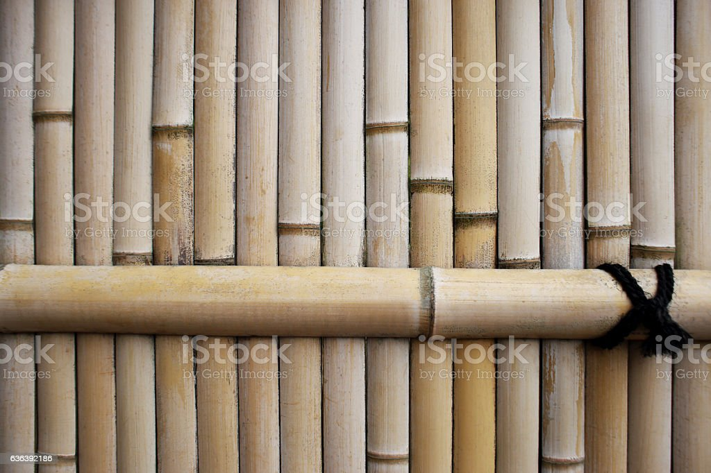 Traditional bamboo fence, asia style, for background. stock photo