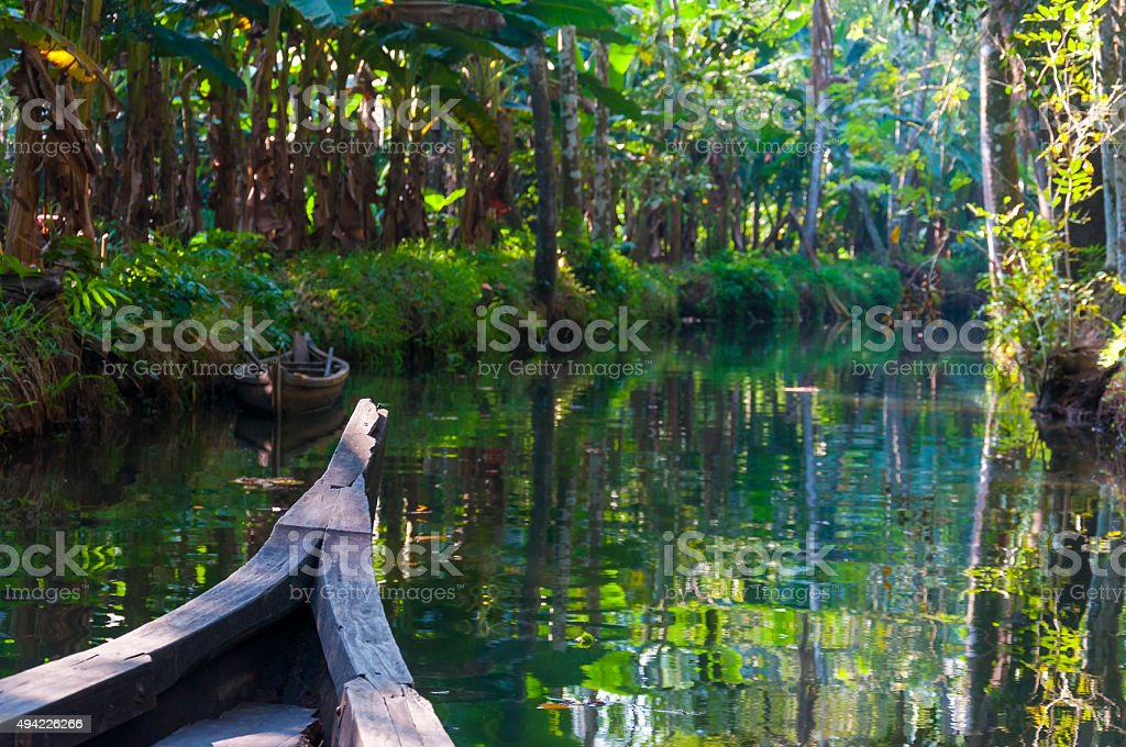 Traditional boat of Kerala Backwaters floats through the jungle stock photo