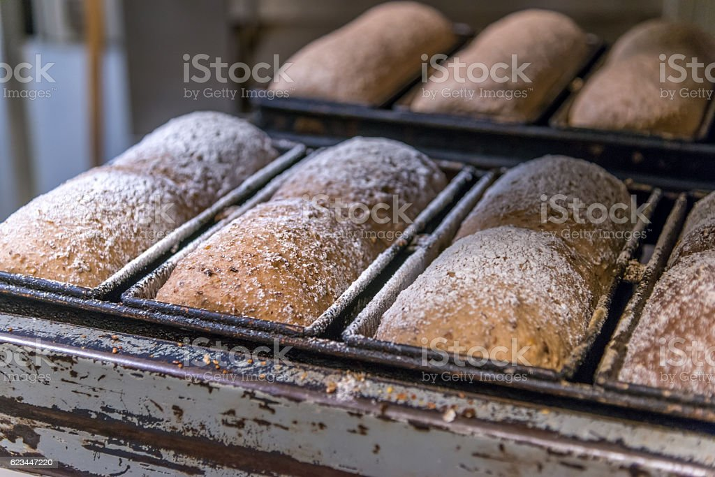 Traditional bread on cooling rack in bakery stock photo