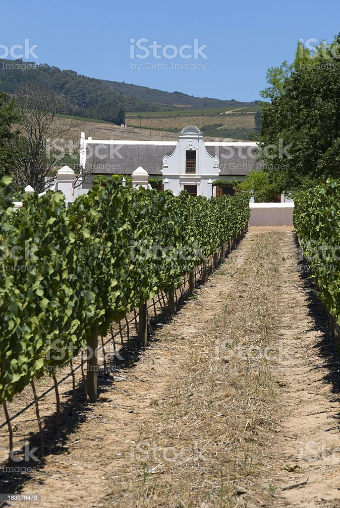 Traditional Cape Winery royalty-free stock photo
