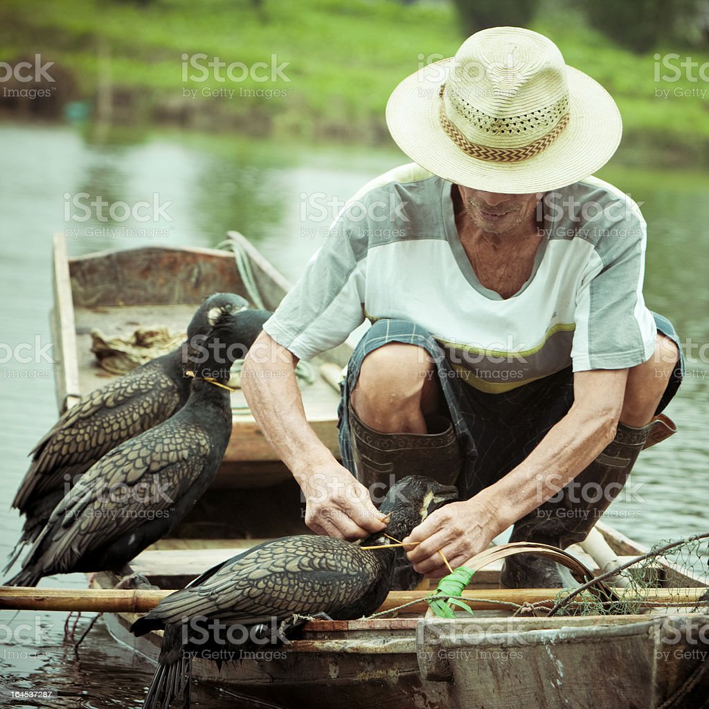 Traditional Chinese Fisherman on River stock photo