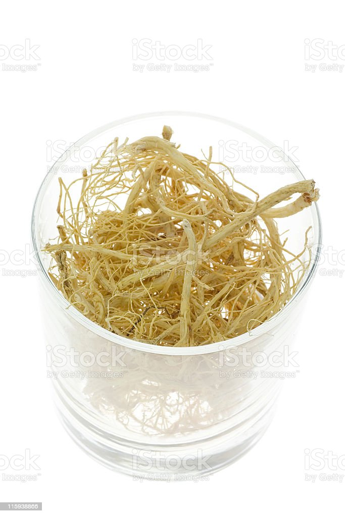 Traditional Chinese Medicine - Ginseng roots royalty-free stock photo