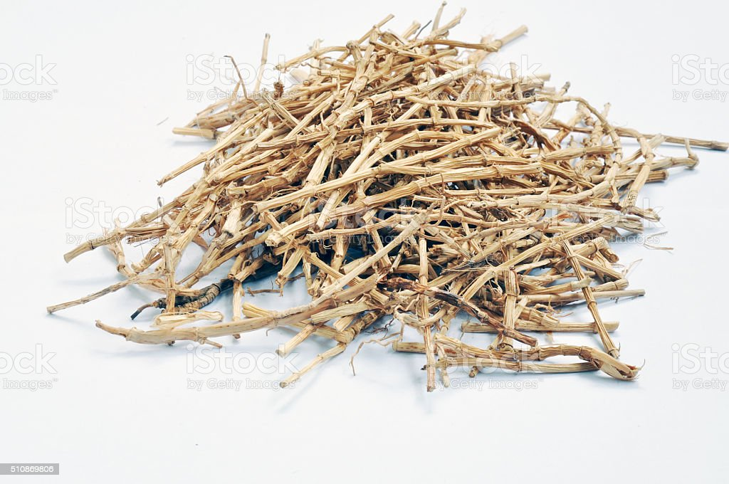 Traditional Chinese medicine:couchgrass root stock photo