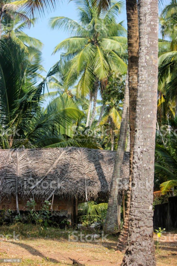 traditional cottage Kerala India stock photo