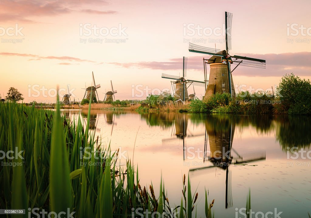 Traditional Dutch windmills at sunrise stock photo