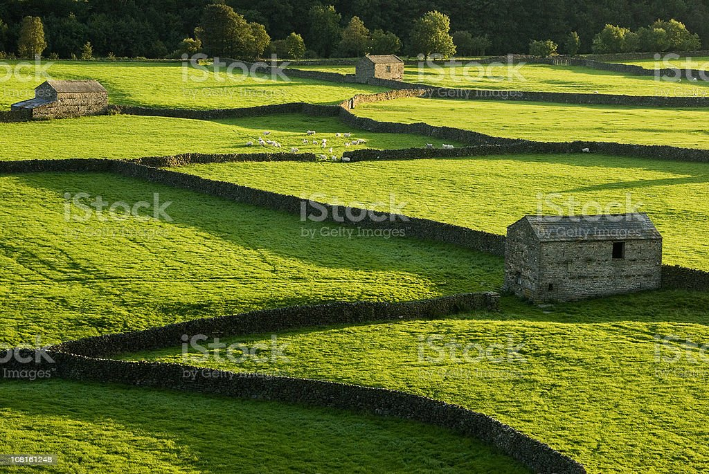 Traditional Farm and Barns in England stock photo