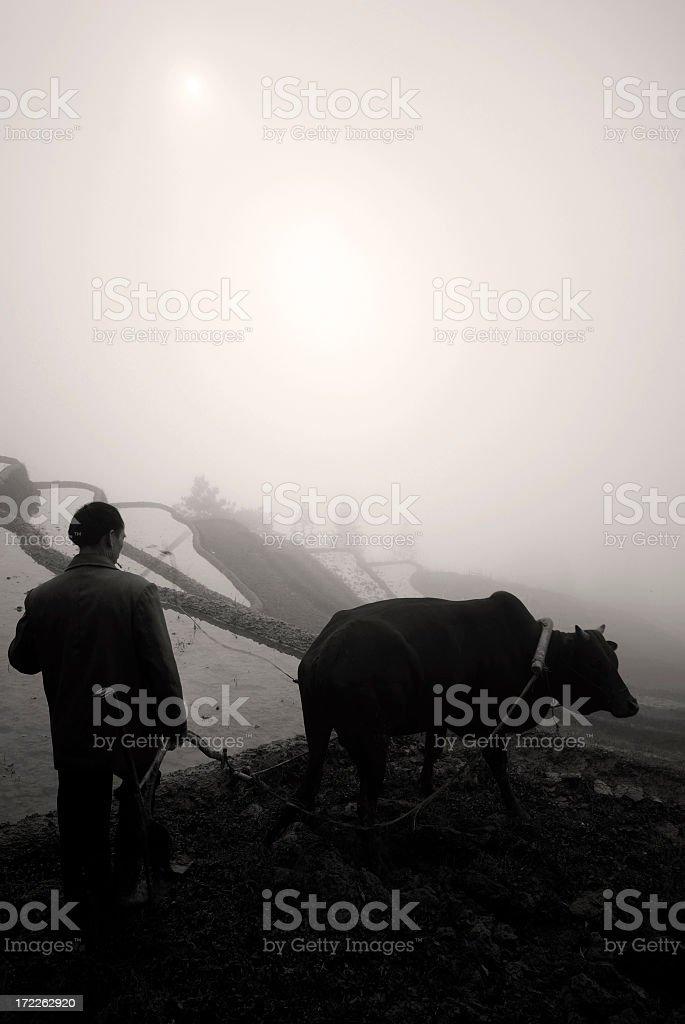 Traditional Farming. royalty-free stock photo