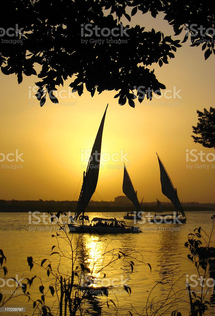 Traditional felucca boats at sunset on the Nile near Cairo royalty-free stock photo