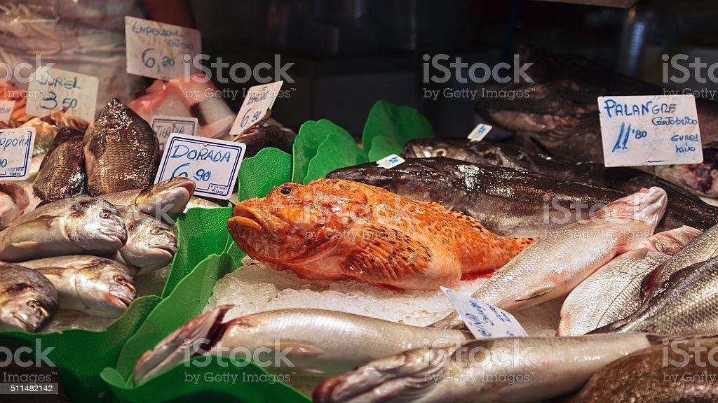 Traditional fish market stock photo