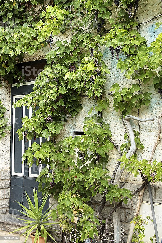Francese tradizionale porta foto stock royalty-free