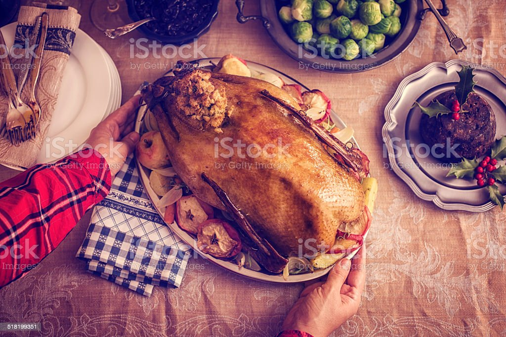Traditional German Holiday Goose Dinner with Dumplings and Red Cabbage stock photo