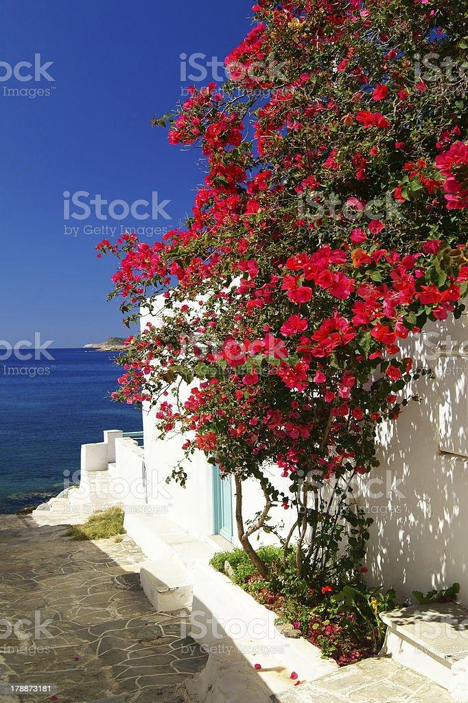 Traditional greek door on Sifnos island, Greece royalty-free stock photo