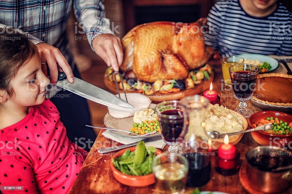 Traditional Holiday Stuffed Turkey Dinner stock photo