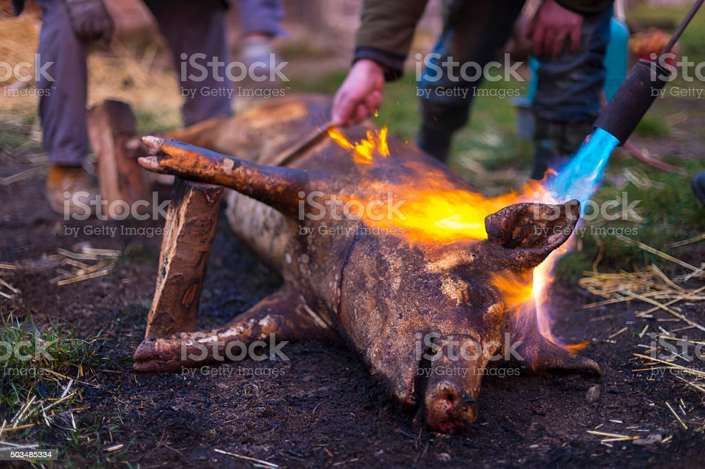 traditional home burning skin stock photo