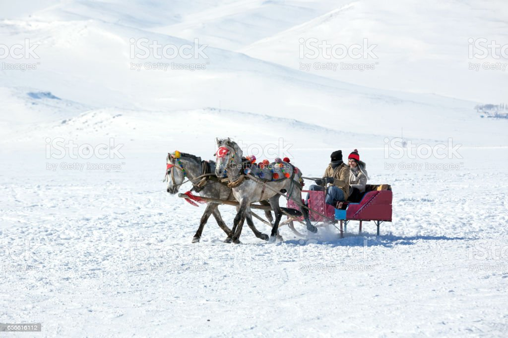 Traditional horse transport with sleigh and woman stock photo