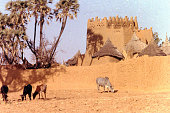 traditional house Mossi village cattle Ouahigouya Burkina Faso West Africa