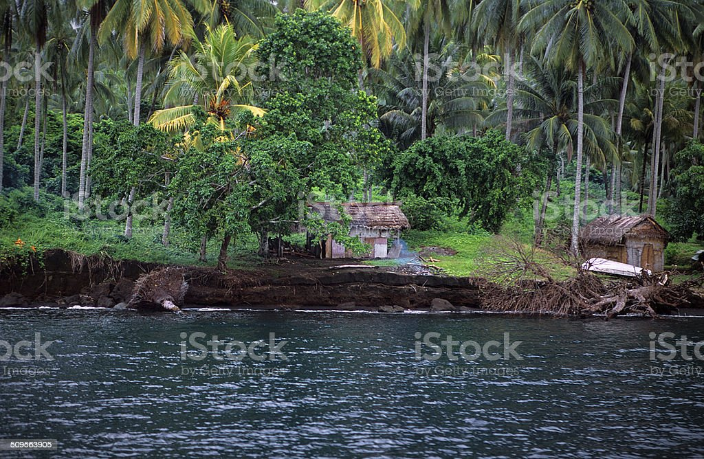 Traditional house on the beach with palm forest in PNG stock photo