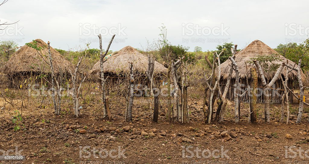 Traditional huts in mursi tribe village. Omo Valley. Ethiopia stock photo