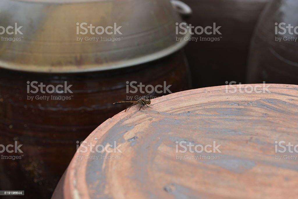 Traditional Korean Jars stock photo