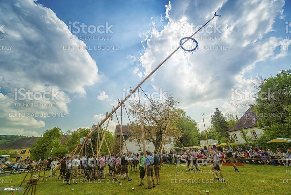 Traditional maypole setting in Burghausen stock photo