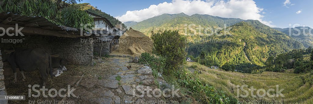 Traditional mountain farm Annapurna Sanctuary Himalayas Nepal stock photo