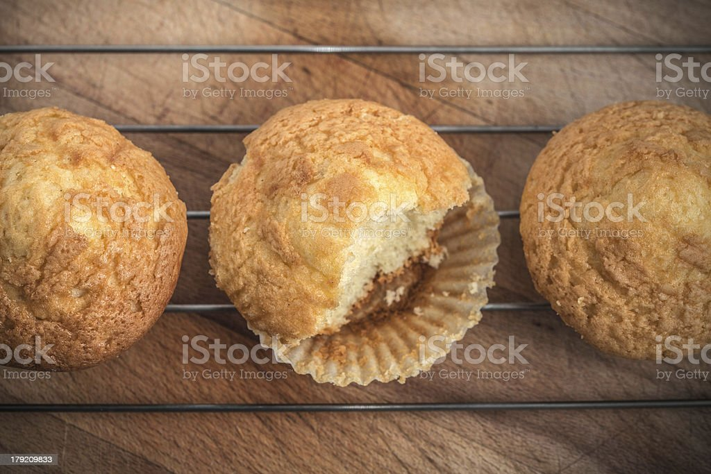 Traditional muffins royalty-free stock photo