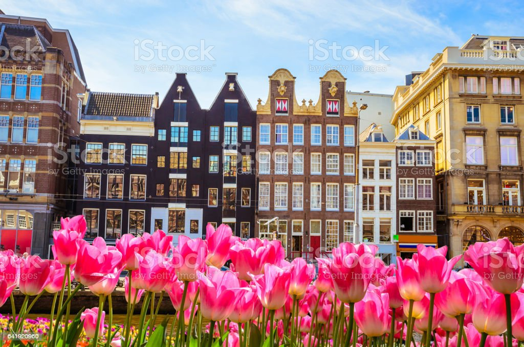 Traditional old buildings, boats and tulips in Amsterdam, Netherlands stock photo