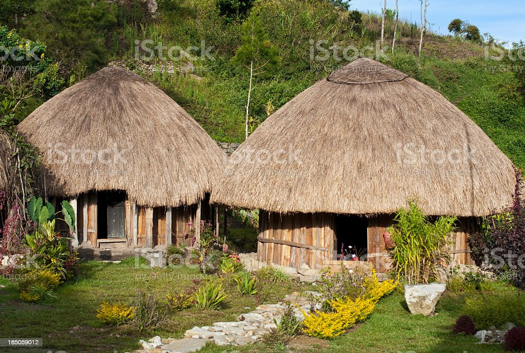 Traditional Papua Huts royalty-free stock photo