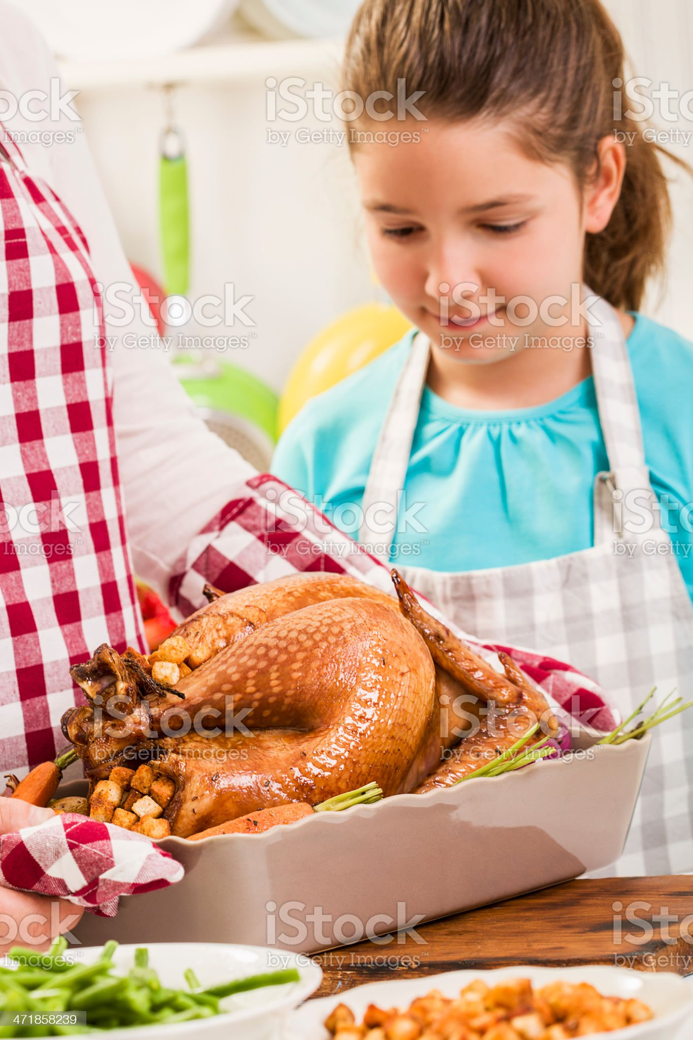 Traditional Roasted Thanksgiving Turkey for Holidays royalty-free stock photo