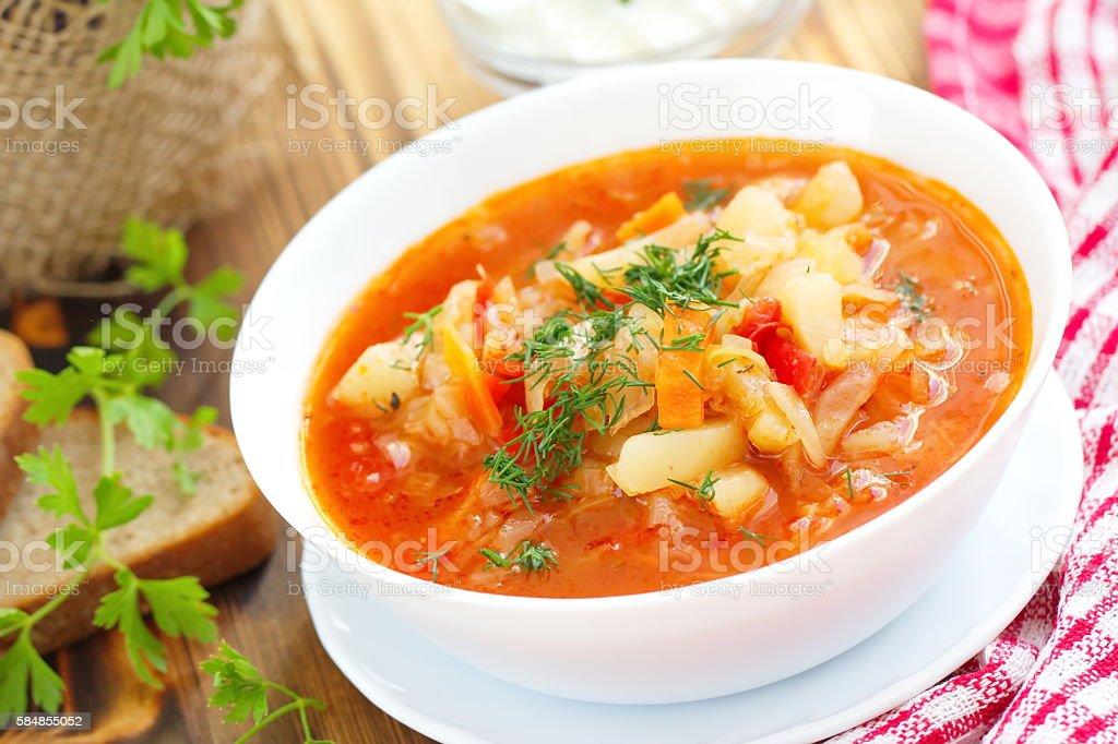 Traditional Russian Ukrainian vegetable borscht soup stock photo