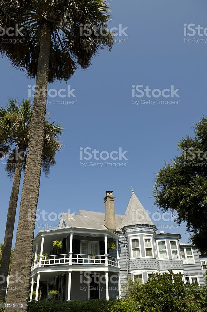 Traditional Southern Architecture Blue Sky Palm Trees royalty-free stock photo