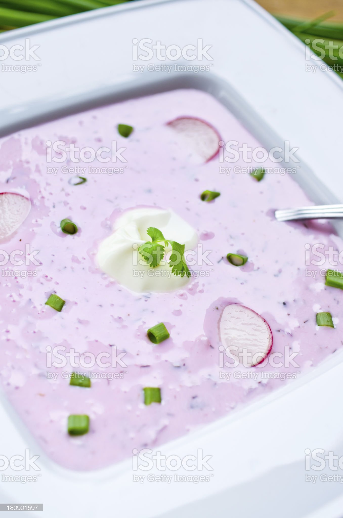 Traditional spring 'cold soup' royalty-free stock photo