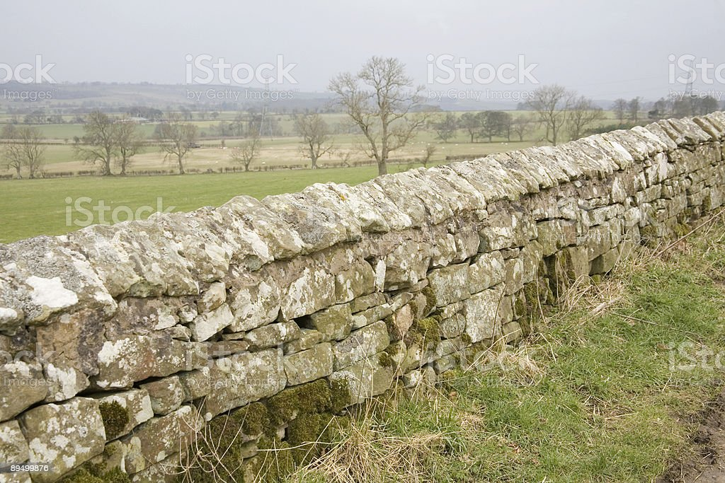 Traditional stone wall Northumberland royalty-free stock photo
