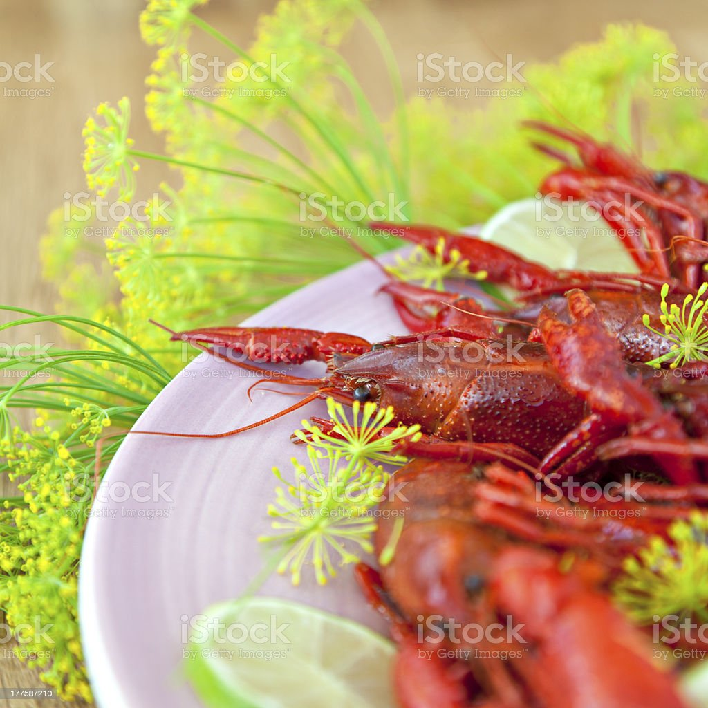 Traditional swedish crayfish holiday meal royalty-free stock photo