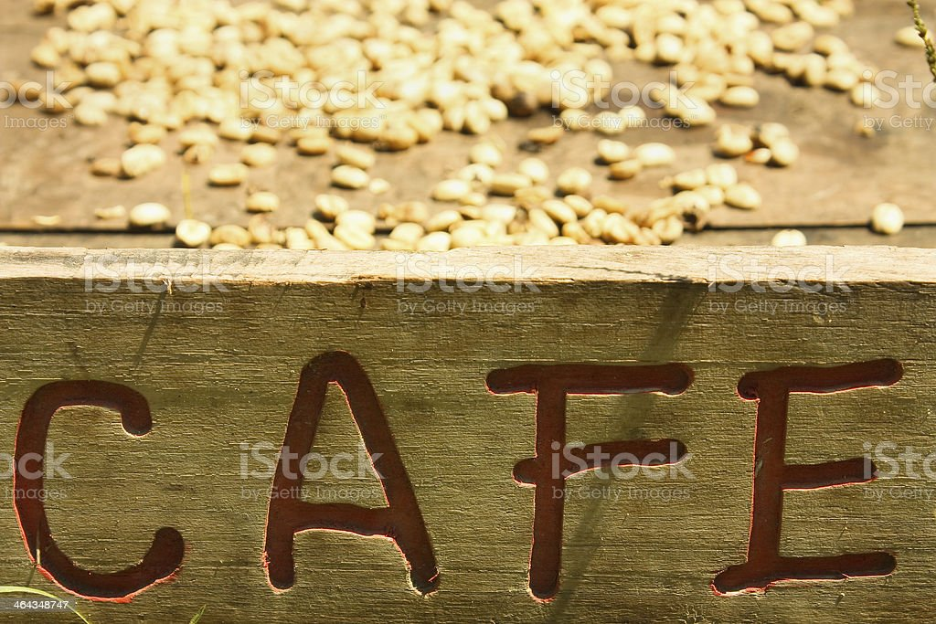 Traditional system of drying the coffee royalty-free stock photo