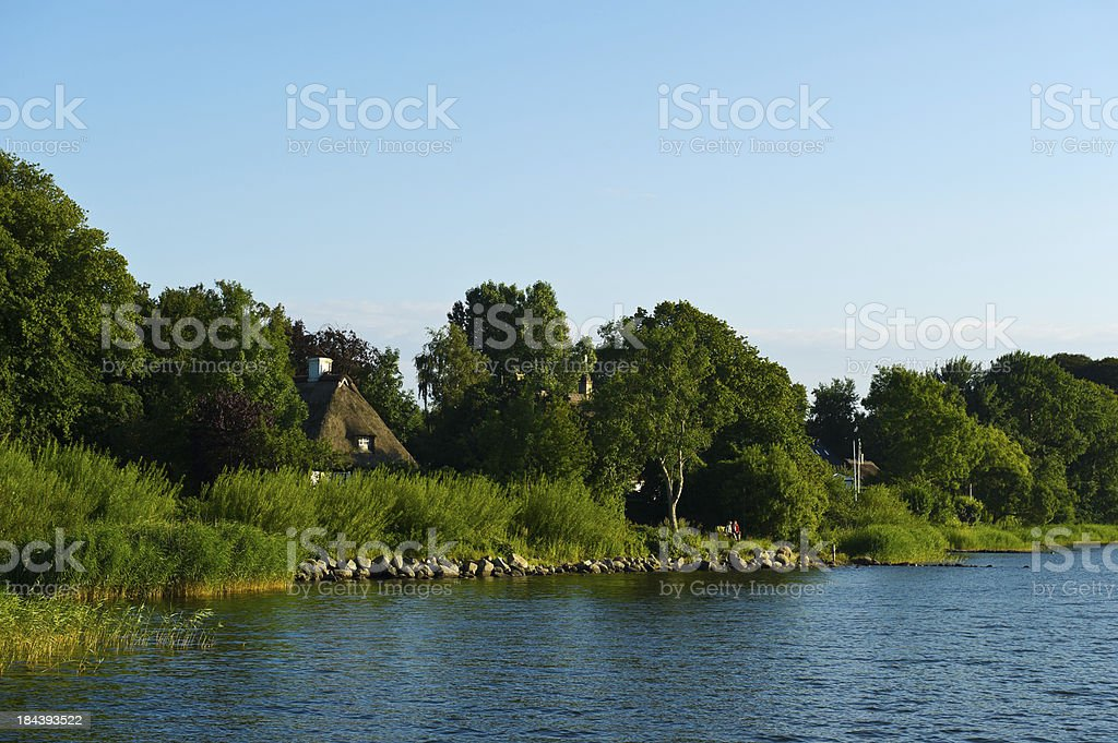 traditional thatched roof house at the schlei riverbank reed stock photo