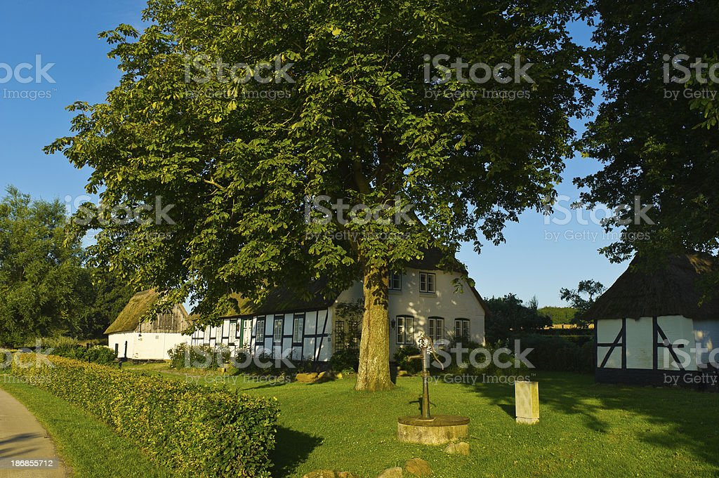 traditional thatched roof house with garden stock photo