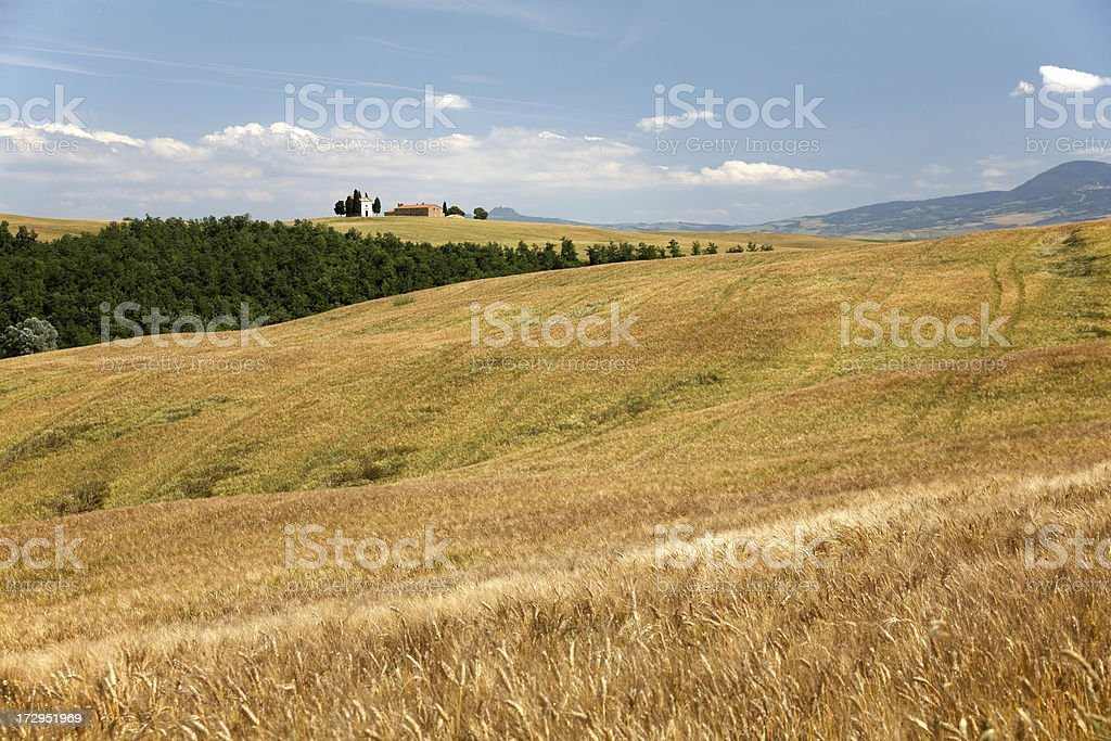 Traditional tuscan farmhouse II royalty-free stock photo