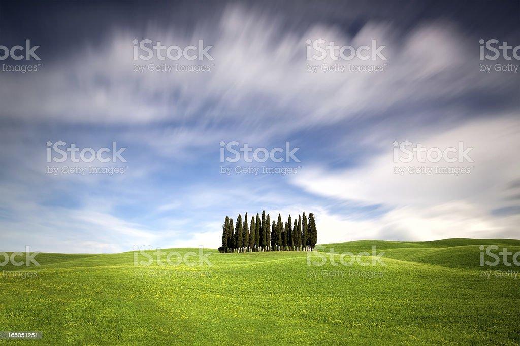 Traditional Tuscany landscape royalty-free stock photo