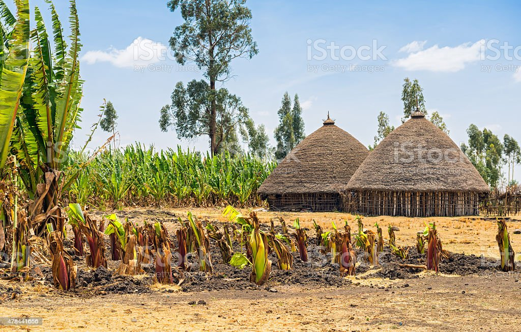 Traditional village houses in Ethiopia stock photo