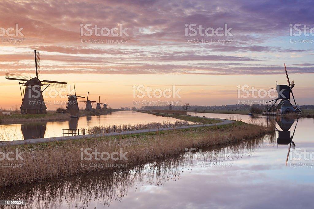 Traditional windmills at sunrise, Kinderdijk, The Netherlands royalty-free stock photo
