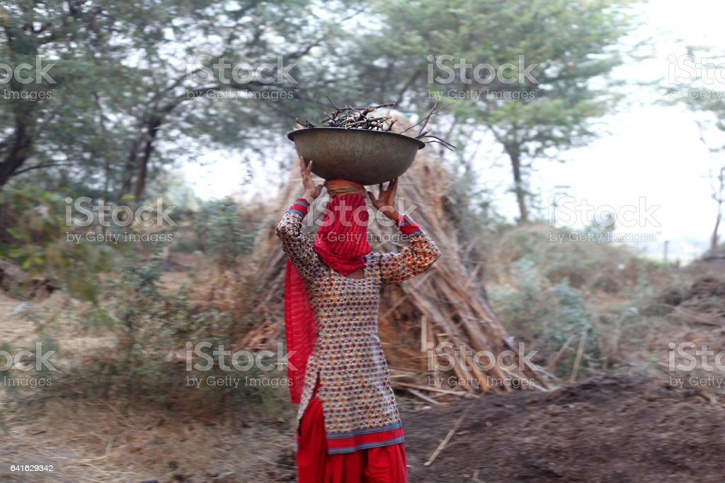 Traditionally Indian rural women carrying firewood stock photo